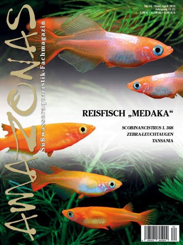Amazonas Medaka Ausgabe
