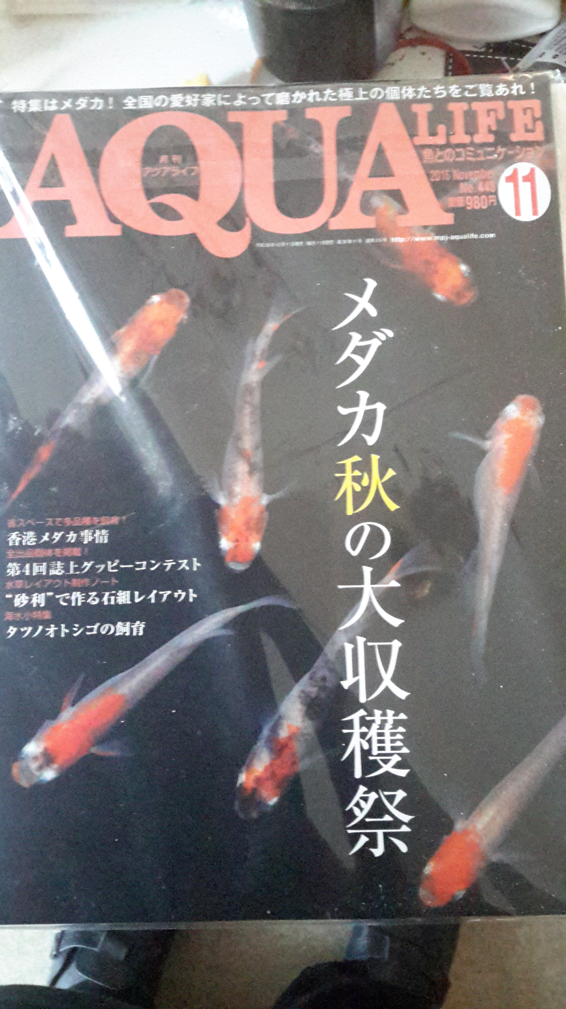 20161119_131608.jpg